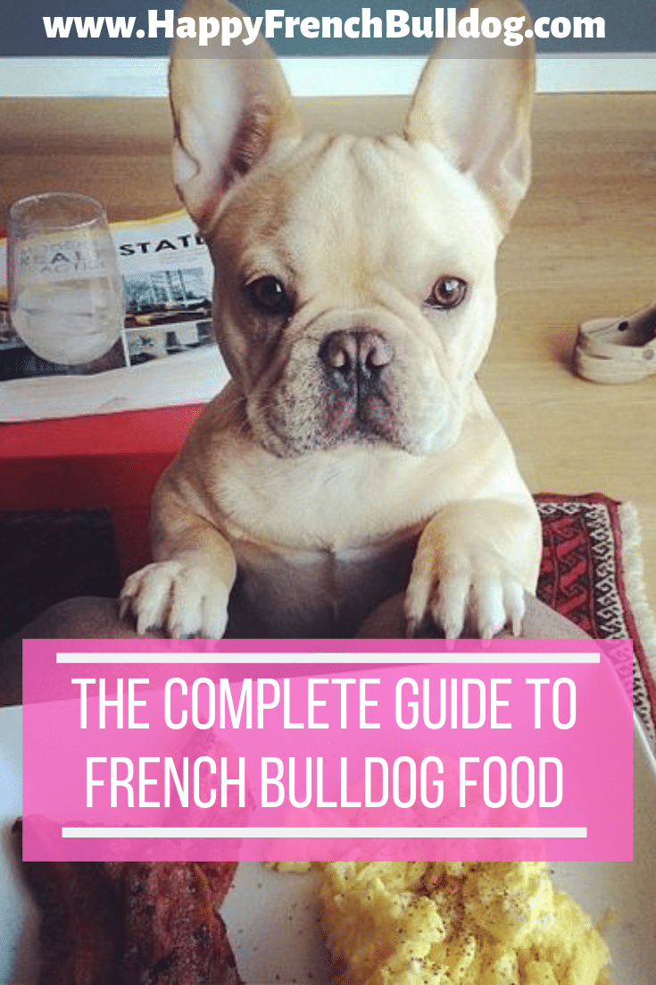 The complete guide to French Bulldog food