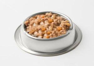 Wet food french bulldog