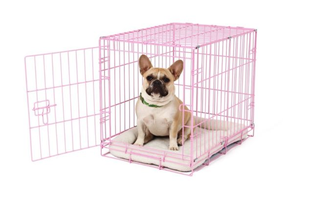 French bulldog pink wire crate