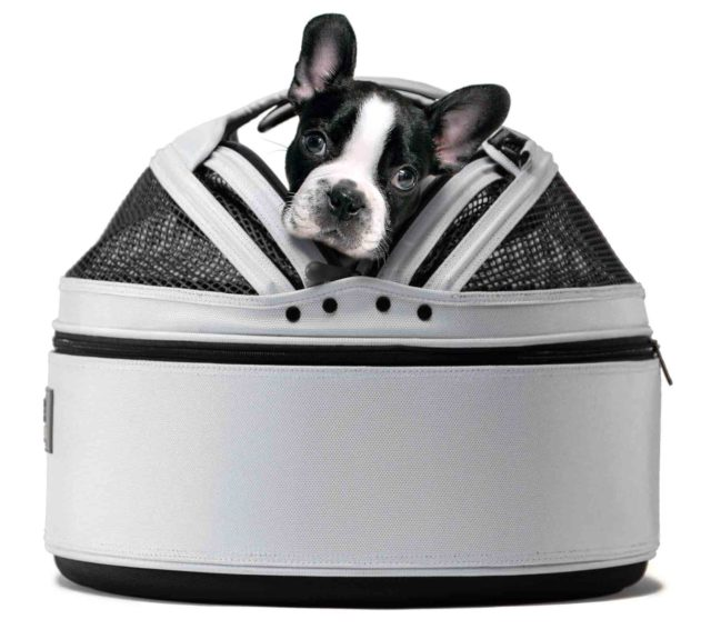 french bulldog travel crate